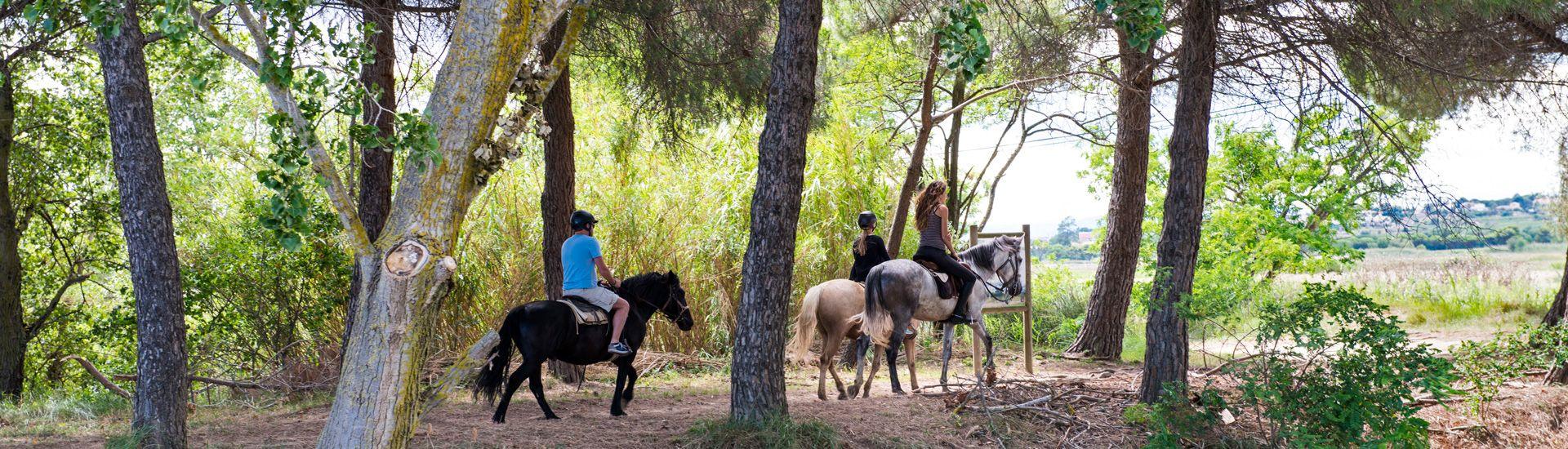 Domaines de vacances de portiragnes les tamaris les portes du soleil - Portes du soleil portiragnes ...